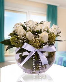 beyaz güllerin uyumu