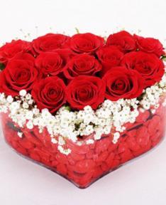 Kırmızı Güller 3