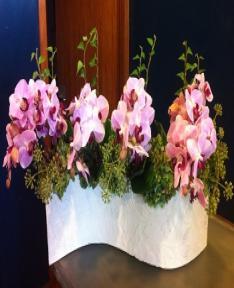 Yatay seramikte orkideler